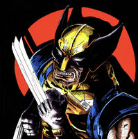 Wolverine Spotted by Barnlord