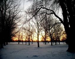 Winter Sunrise by mandeax