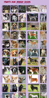 Trik's Dog Breed Guide by Jeakilo