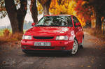 Seat Ibiza Cupra by CJacobssonFoto