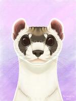 [iPad] Black-Footed Ferret Portrait by Scaleeth