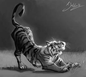 Tiger Stretch Sketch by dodgyrom
