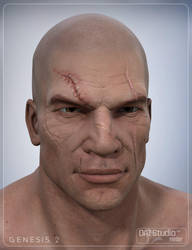 Face Scars Decals for Genesis2 by smay3d