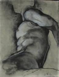 Male Torso 1 by dvboggs