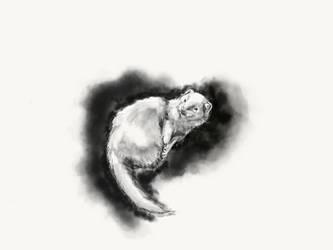 Portrait DEW ferret by dvboggs