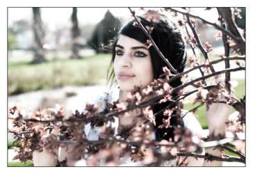 Fresh Spring by DanielFlaco