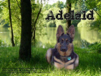 Adelaid by FromHallowedWithLove