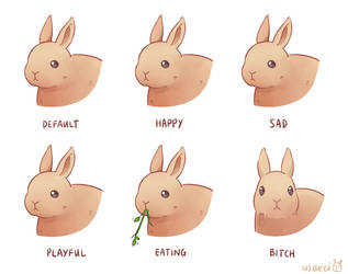 Rabbit Expressions by usarei