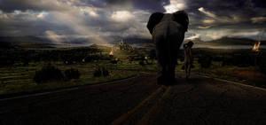 Traveler by edlo
