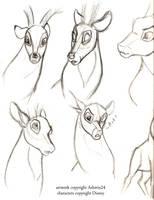 Sketchbook-Disney Deer v3 by Ashwin24