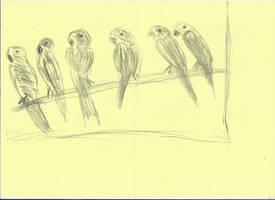 Virtual Parrots v881 by lv888