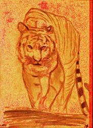 Tiger Passion V881 by lv888