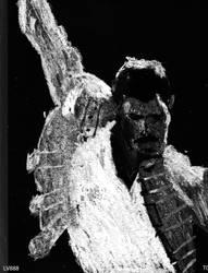 Freddie Mercury v881bis by lv888