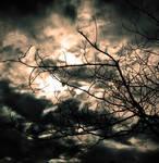 Clouds by cippalippa00