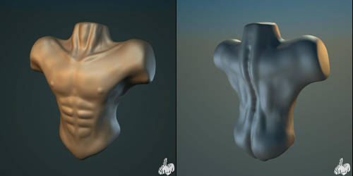 torso study by voxelbunny
