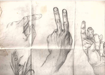 Hand and Finger Poses by NewbMangaDrawer