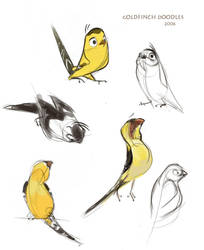 Finches by indigofox