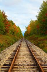 +Road Through Seasons+ by MeganAllen