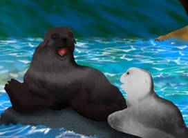 Jungle Book: The White Seal by Manic-Pest