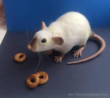 Ratty by thai-binturong