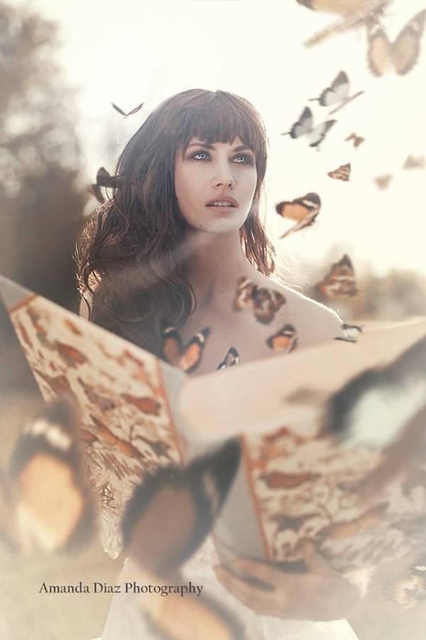 Lost Butterflies by Amanda-Diaz