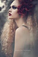 Rose by Amanda-Diaz
