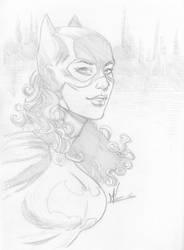 Batgirl by Marc-F-Huizinga