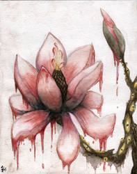Red Magnolia by LarsVsraL
