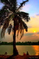 Fishing at Sunset by adityapudjo
