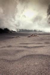 Whispering Sand by adityapudjo