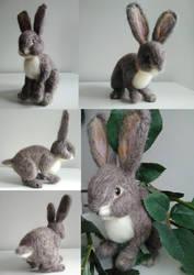 European Wild Rabbit by devinecrafts