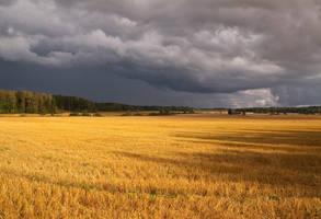 Incoming storm by KaniJonas