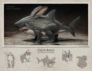 Shark Bunny by NateHallinanArt