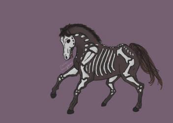 Skeleton Horse by Selma-Josephine