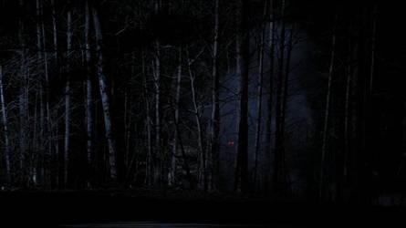 werewolf in forest by roney2011