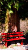 Red Bench waiting ... by LeWelsch