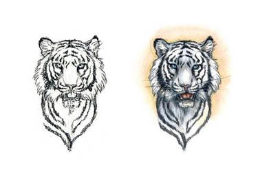 . Bengal Tiger . by Maiwenn