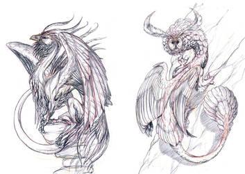 . Bird Dragons . by Maiwenn