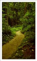 Rainforest by MushroomMagic