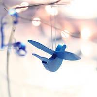 bluebird by tjasa