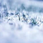 sneg by tjasa
