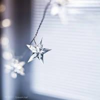 starlight by tjasa