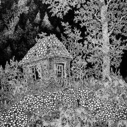 Cabin by RaulAndro