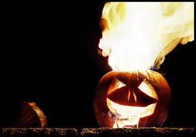 pumpkin by wisekracker