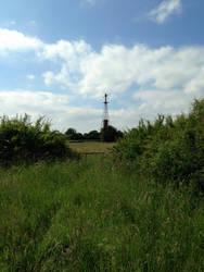 Sapcote Fields 19 July '15 01 by Santasorange99