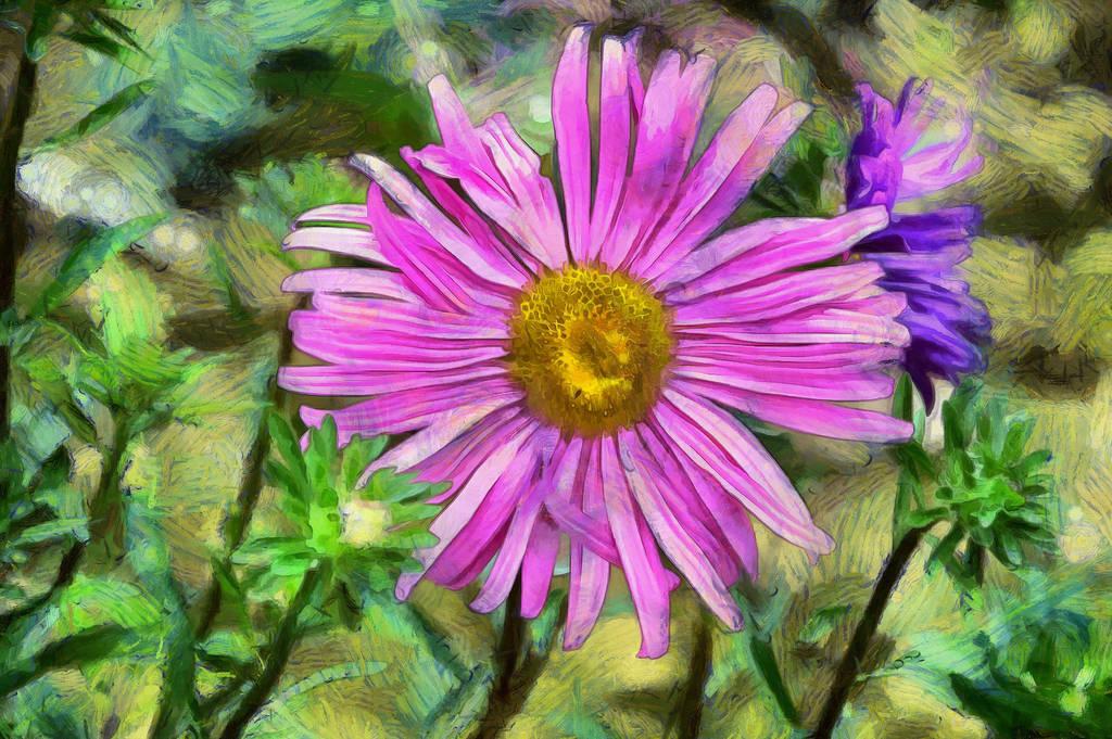Flower4 by oldhippieart
