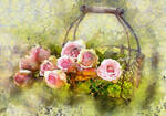 Flower7 by oldhippieart