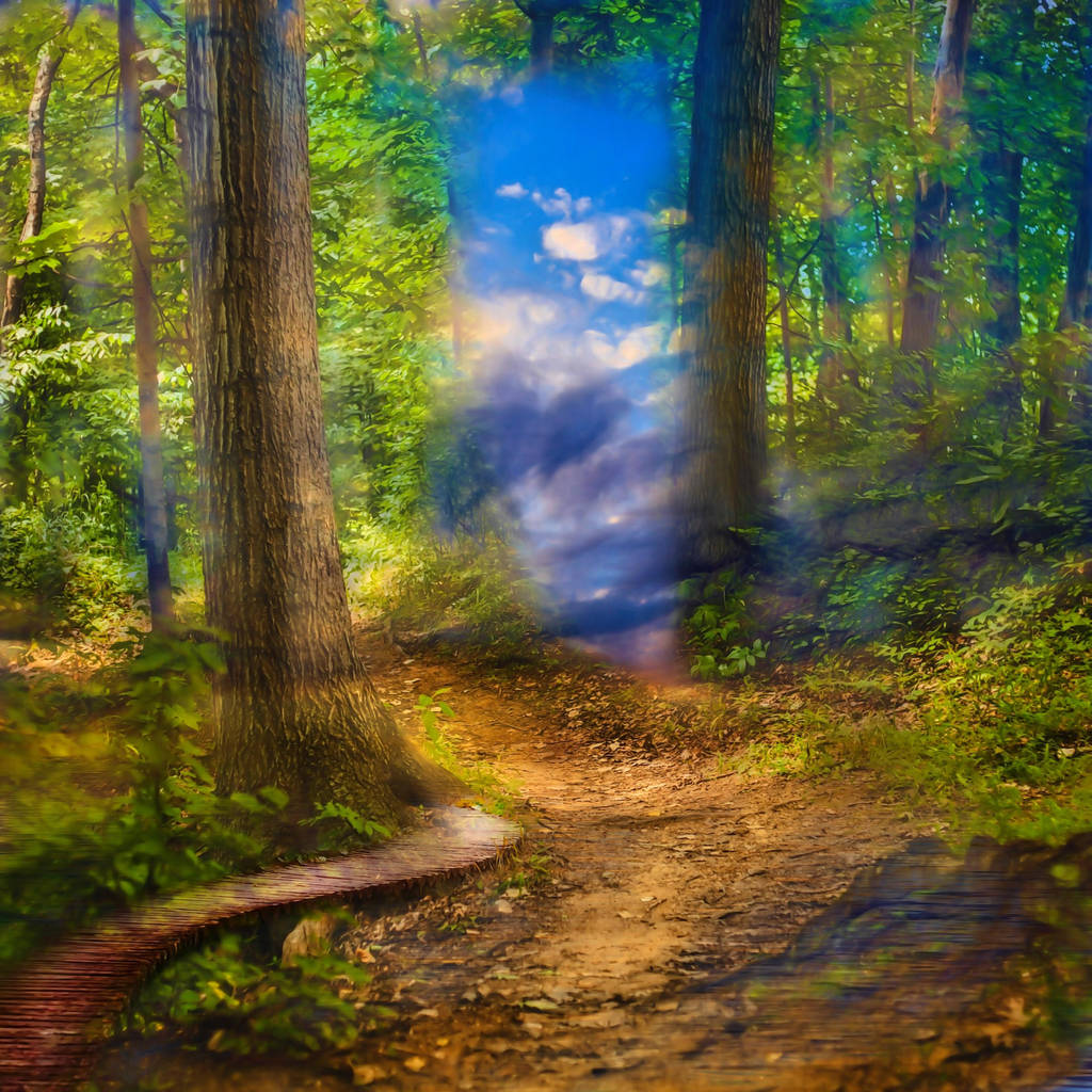 Mystic Forest by oldhippieart