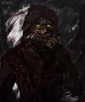Unmasked Shikari by Atik1n
