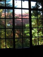 Dark Window Stock 1 by HauntingVisionsStock